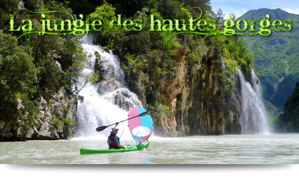 La jungle des hautes gorges